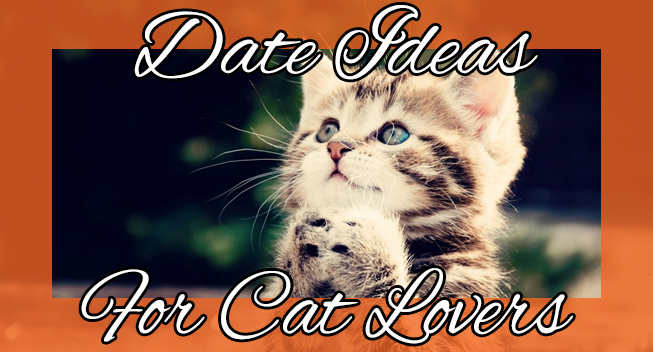 Date Ideas For Cat Lovers